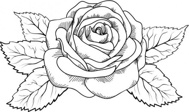 149 Dibujos para imprimir colorear o pintar para nios  Para Nios