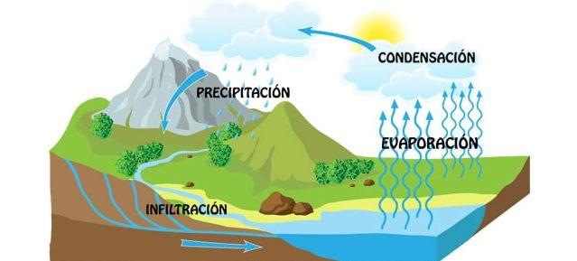 El Ciclo Del Agua Para Niños Fases Infografias Información