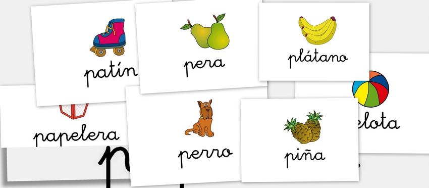 Palabras Con P Animales Colores Plantas Cosas Paises